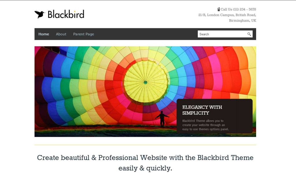 Blackbird theme for writers and authors