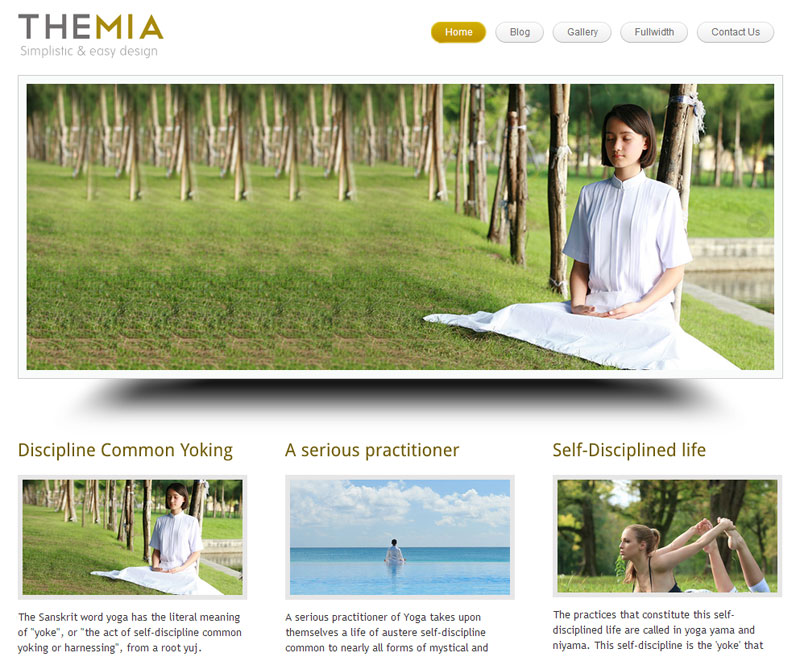 Themia theme for writers and authors